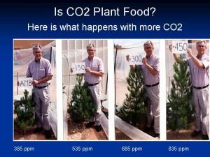 Plant_Food